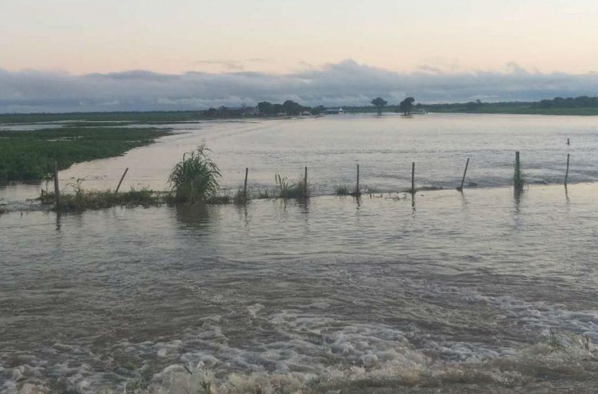 Chaco: fuertes lluvias ponen en riesgo una cosecha de 1,5 millones de toneladas de soja