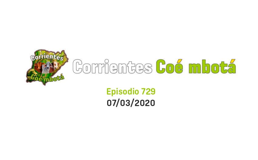 Capitulo 729 – 07/03/2020