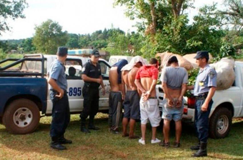 Preocupa la cantidad de delitos en zonas rurales de Misiones