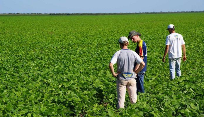 """Convocan a profesionales de la agronomía a un curso virtual de la UBA sobre """"Fundamentos de ética y bienestar animal"""""""