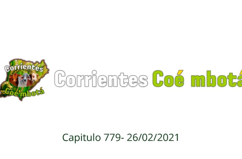 Corrientes Coé Mbotá N°779
