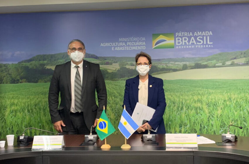 Basterra, con la ministra de Agricultura de Brasil: agenda bilateral y acceso a mercados, entre los puntos clave