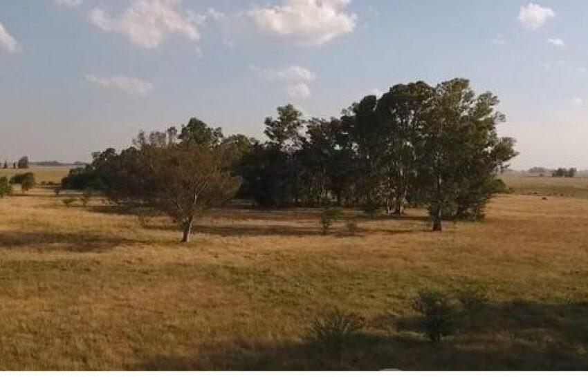 Mercedes y Paso de los Libres gestionan uso de tierras del Ejército y programas de agricultura