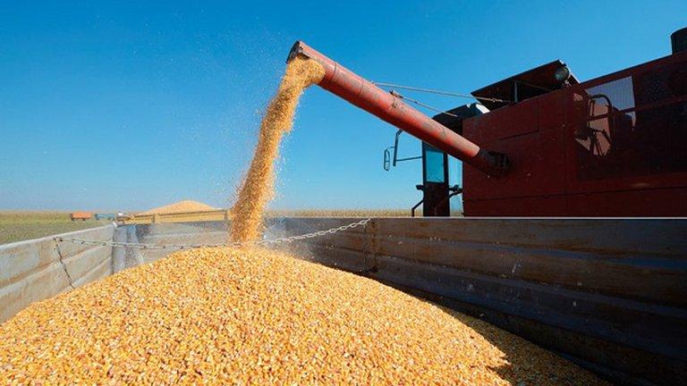 Argentina volverá a ser el principal proveedor de soja