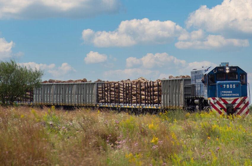 El tren de cargas sigue creciendo: transportó 19% más en toneladas en el primer trimestre