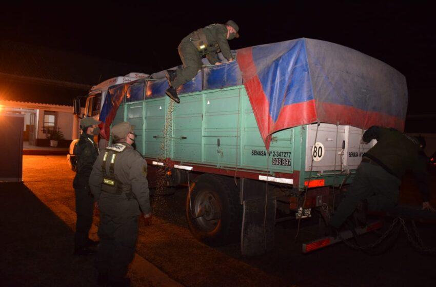 Tráfico ilegal de granos: Gendarmería secuestró 29 toneladas de soja y dinero en efectivo sin declarar