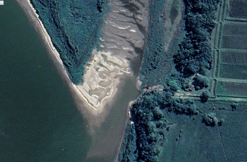 Bajante del Paraná: qué pasará con la producción de arroz