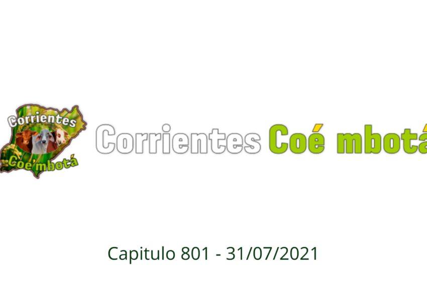 Corrientes Coé Mbotá N° 801 – 31/07/21