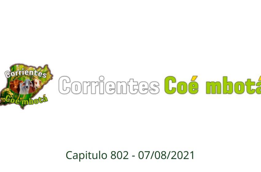Corrientes Coé Mbotá N° 802 – 07/08/21