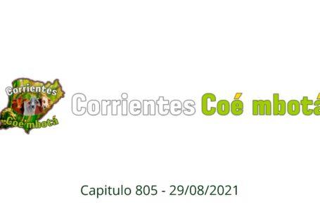 Corrientes Coé Mbotá N° 805 – 28/08/21