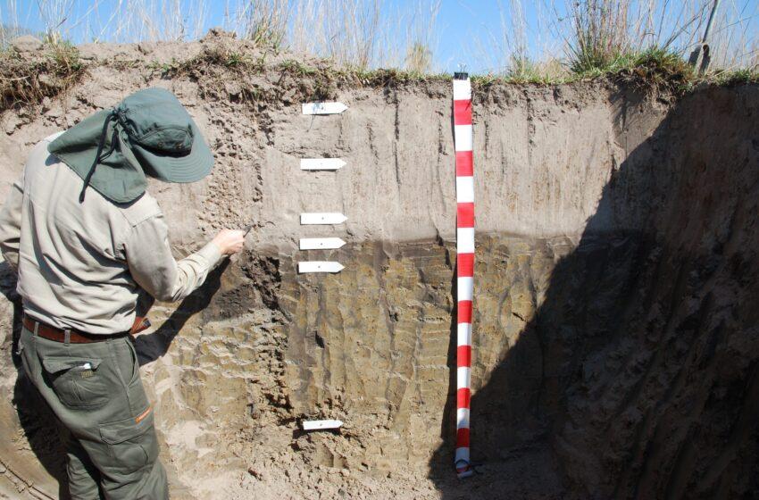 En Corrientes, el INTA avanza con el mapeo de los suelos