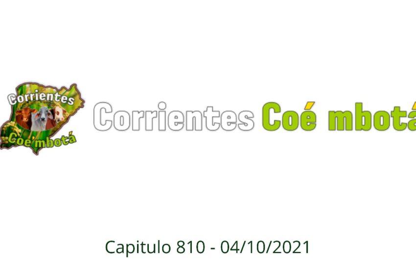 Corrientes Coé Mbotá N° 810 – 04/10/21